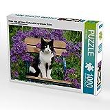 Katze sitzt auf einem Gartenstuhl vor blauen Blüten 1000 Teile Puzzle quer (CALVENDO Tiere)