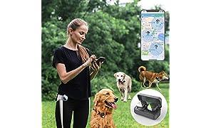 Tracker GPS per animali domestici per 1-3 cani, senza tariffa mensile, dispositivo di monitoraggio in tempo reale, monitoraggio dell'attività (solo per cani, 3 cani al massimo)