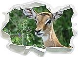 cervo carino prima alta prato, formato adesivo carta da parati 3D: 62x45 cm decorazione della parete 3D Wall Stickers parete decalcomanie