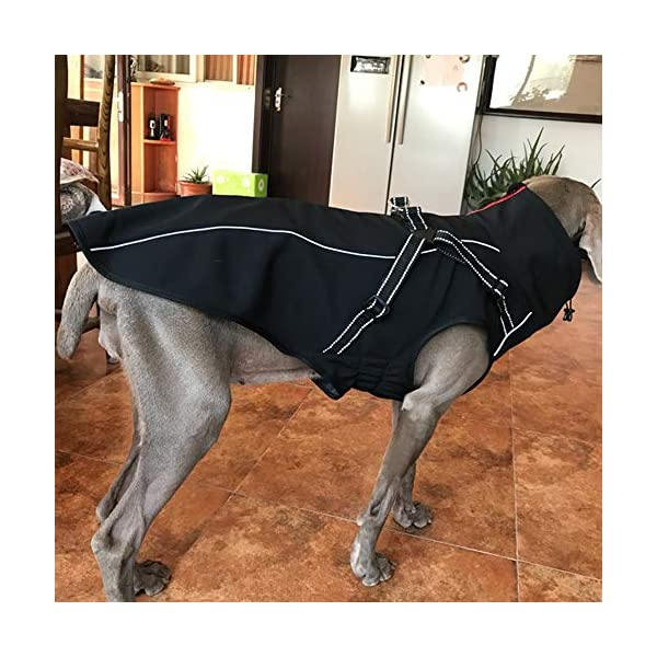 JunBo Dog Jacket with Harness Warm Coats and Jackets for Medium and Large Dogs 8