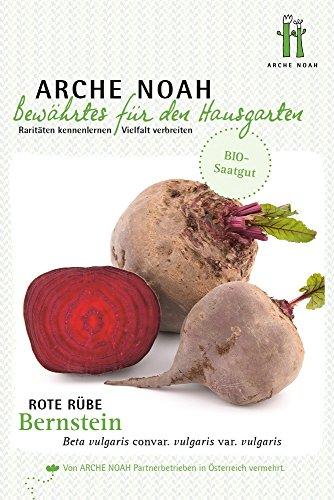 Arche Noah 6698 Rote Rübe Bernstein (Bio-Rübensamen)