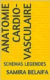 ANATOMIE CARDIO-VASCULAIRE: SCHEMAS LEGENDES