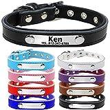 TagME Personalisierte Hundehalsbänder aus Leder/Weich Gepolstertes Hundehalsband/Löschen Sie Name, Telefonnummer und Mikrochipnummer/Passend für kleine Hunde/Schwarz