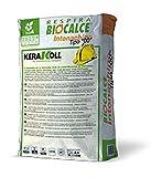 BIOCALCE INTONACHINO 00 KG.20 (047640)