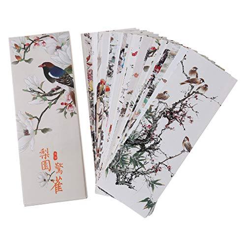 Cutebility, 30 segnalibri con fiori e uccelli, segnalibri di carta, biglietti, messaggi, segnalibri per la scuola
