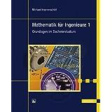 Mathematik für Ingenieure 1: Grundlagen im Bachelorstudium