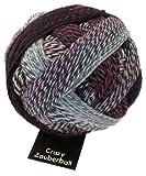 Schoppel-Wolle Crazy Zauberball, Lilac Breeze