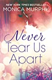 Never Tear Us Apart: Never Series 1 (English Edition)