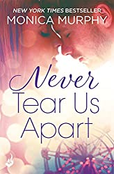 Never Tear Us Apart: Never Series 1 (English Edition)