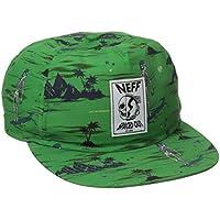 Neff Theotis SIG Cap rot