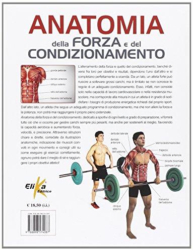 Zoom IMG-1 anatomia della forza e del