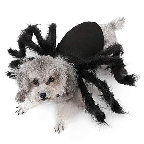 Fühlte Mich Tuch Spinne Haustier Kostüme Urlaub Atmosphäre Feier Party Supplies lustige Katze Hund Welpe Halloween Cosplay - Halloweentown Kostüm