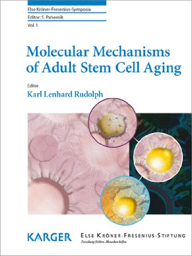 molecular-mechanisms-of-adult-stem-cell-aging-else-kroner-fresenius-symposia