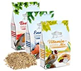 Dehner-Set di Natura Premium Wild Mangiatoia, Fodera Mix, schalenfrei, ciascuno di Circa 900G (2.7kg)