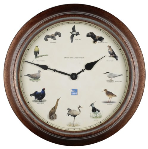 Smart Effects 13302MQZ RSPB Birds Under Threat Clock