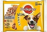 Pedigree Hundefutter Nassfutter Vital Protection Adult / Pastete mit Rind / Huhn und Karotten