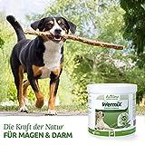 AniForte Wurm-Formel 250 g- Naturprodukt für Hunde - 3