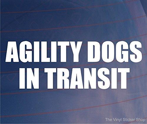 AGILITY Hunde im Auto/TRANSIT Van/Bumper Window Vinyl Sticker/Decal