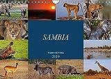 Sambia - wundervolle Wildnis (Wandkalender 2019 DIN A4 quer): Das wahre Afrika erleben (Monatskalender, 14 Seiten ) (CALVENDO Orte) - Wibke Woyke