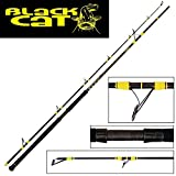 Black Cat Passion Pro DX Spin Canne à pêche avec Support Taille Unique