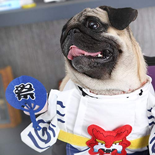 yu komisch, Haustiere Kleid Kleidung Hunde komische Klamotten kurzen geraden Sommerkleid hin,XL
