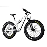 IMUST Malamute, 120mm Full-Suspension, Carbon Fat Bike with 11-Speed...