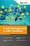 Credit Management in SAP S/4HANA (English Edition)