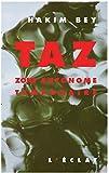 TAZ: Zone autonome temporaire