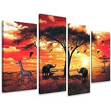 tableau africain amazon
