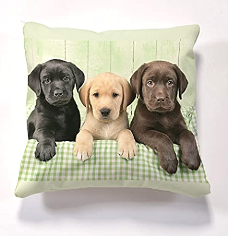 Dogs and Puppies Scatter Cushions, Cushion & insert, Beautiful printed Designer Cushion with Filling 17