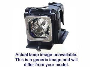 Lampe originale CHRISTIE 003-000306 pour vidéoprojecteur Roadster S PLUS 20K