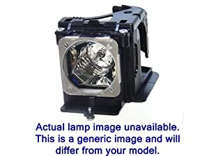 AVIO iP-40BE (IPLK-G1 / 1128-20) Lampe