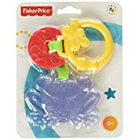 Fisher-Price Friendly Frog Teether (CBK76)