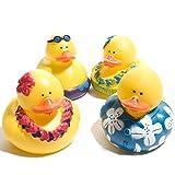 Century Novelty Luau Rubber Duck 12-Pack