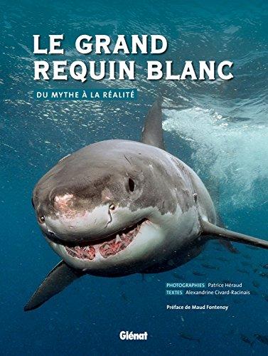 Le grand requin blanc: Du mythe  la ralit