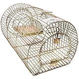advancedestore BIG SIZE Iron Trap, Trapper, Cage, Rat Catcher, Mouse Trapper & Rodent Cage
