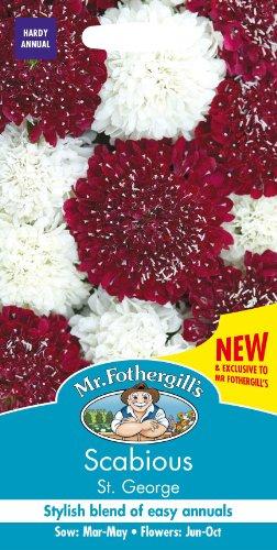 Mr Fothergills Pilzsporen, Blume Witwenblume ST GEORGE, gemischt, 35 Samen