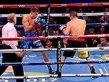 Gennady Golovkin vs. Marco Antonio Rubio