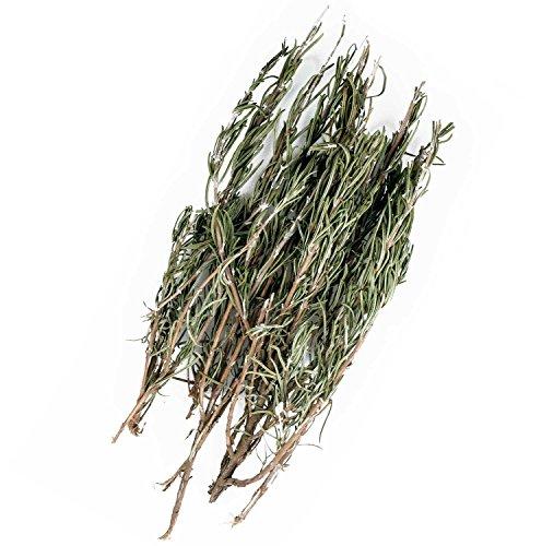Preisvergleich Produktbild Original Italinischer Bio Rosmarin an Zweigen aus Sizilien Rosmarinzweige getrocknet 25g (ideal auch für Präsentkörbe)