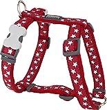 Red Dingo Desinger Dog Harness, White Stars on Red (12mm x Neck: 25-39cm / Body 30-44cm) XS