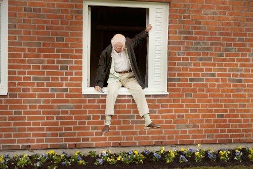 Der Hundertjährige, der aus dem Fenster stieg und verschwand [Blu-ray]: Alle Infos bei Amazon