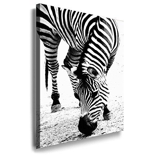 Fotoleinwand24 - Tiere Abstrakt 'Zebra' / AA0072 / Fotoleinwand auf Keilrahmen / Schwarz-Weiß /...