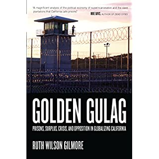 Golden Gulag: Prisons, Surplus, Crisis, and Opposition in Globalizing California (American Crossroads Book 21) (English Edition)