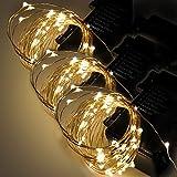 Guirlande Lumineuse Fil Cuivre LED Etanche a Pile Interieur et Exterieur Éclairage Doré 60 LED 6 Mètres avec 8 Modes Boitier de Batterie Décoration de Noël Mariage Anniversaire Lot de 3 de Enuotek