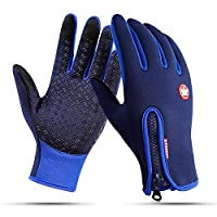 Aisprts Cycling Gloves, Full Finger Winter Thermal Touch Screen Warm Windproof Waterproof Gloves for Men and Women (Blue, L)