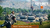 Call of Duty Black Ops 4 ... Ansicht