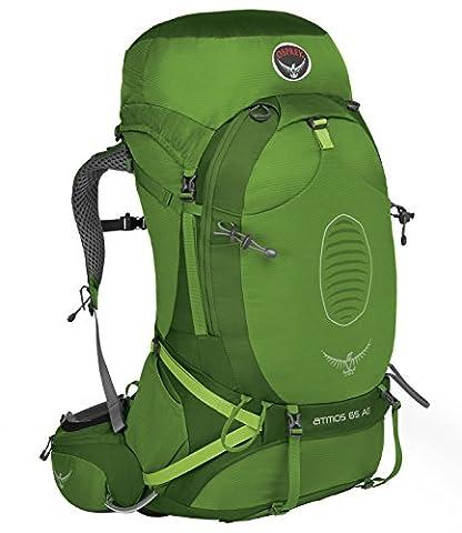 OSPREY Atmos AG 65 Men's Backpack MD Mens Absinthe Green (Absinthe T)