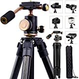 Lightweight DSLR Projector Stand,Professional Portable Camera Tripod With 1/4 Inch Screw,360Panorama Ball Head And Quick Release Plate For Canon Nikon Olympus Devices DV Camcorders And Projector