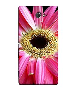 PrintVisa Pink Daisy Flower 3D Hard Polycarbonate Designer Back Case Cover for Sony Xperia M2 Dual :: Sony Xperia M2 Dual D2302