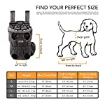 Petmars Pet Backpack Carrier: Dog And Cat Carrying Bag, Front And Back Facing, For Small Medium And Large Sized Breeds… 9